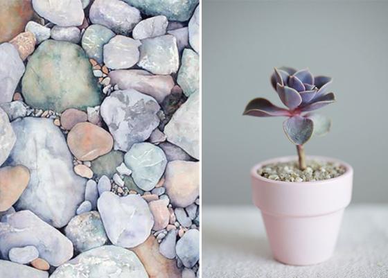 pastel-rocks-succulent