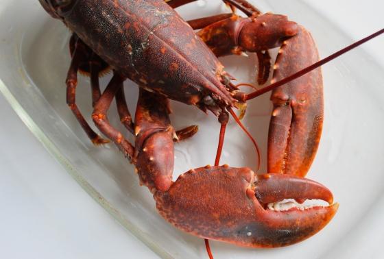 homard-recette-poiscaille